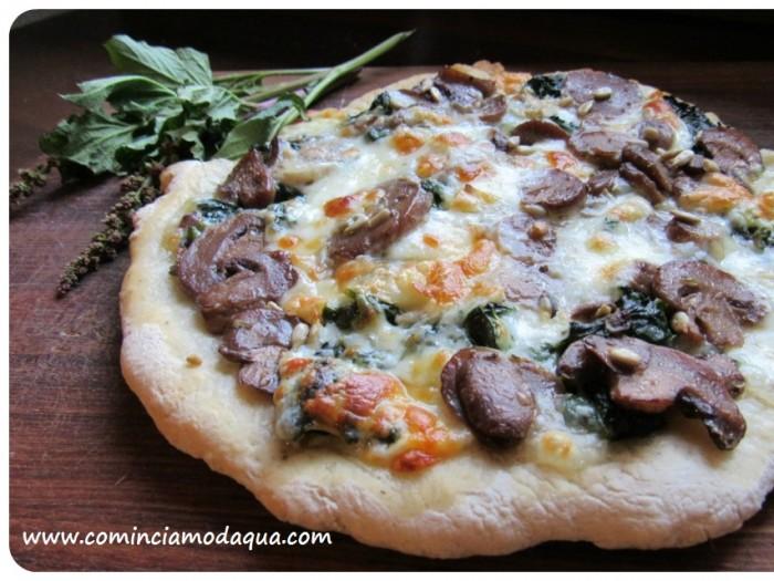 pizza piatto11